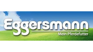 eggersmann logo-400